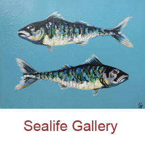 Georgie Baskerville Artist - Sealife Gallery